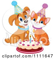 Cute Puppy And Cat Wearing Party Hats And Smiling Over A Birthday Cake