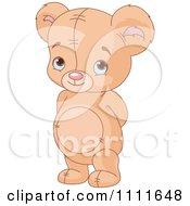 Bashful Teddy Bear