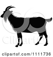 Clipart Silhouetted Goat In Black And White Royalty Free Vector Illustration by Prawny Vintage