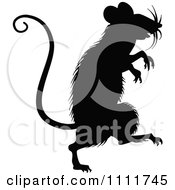 Clipart Silhouetted Mouse In Black And White Royalty Free Vector Illustration