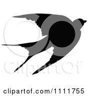 Silhouetted Swallow In Black And White