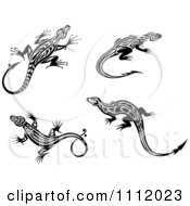 Black And White Tribal Lizards 2