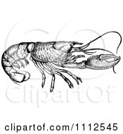 Clipart Vintage Black And White Lobster Royalty Free Vector Illustration