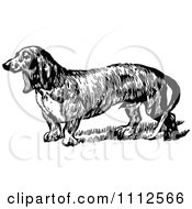 Clipart Retro Black And White Daschund Dog Royalty Free Vector Illustration