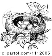 Clipart Retro Black And White Bird Nest With Eggs Royalty Free Vector Illustration