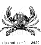 Clipart Black And White Vintage Crab 3 Royalty Free Vector Illustration