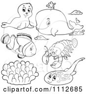 Clipart Outlined Seal Whale Clownfish Lobster And Halibut Royalty Free Vector Illustration by visekart