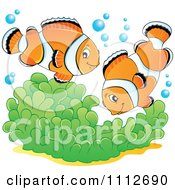 Clipart Clownfish Pair Over Soft Corals Royalty Free Vector Illustration