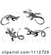 Black And White Tribal Lizards 3