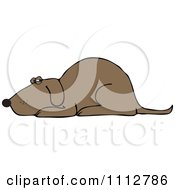 Clipart Brown Dog Resting Royalty Free Vector Illustration by djart