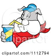Clipart Bbq Bulldog Mascot Drinking A Fountain Soda Royalty Free Vector Illustration by LaffToon