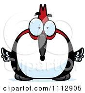 Surprised Woodpecker Bird