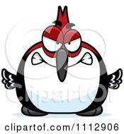 Angry Woodpecker Bird