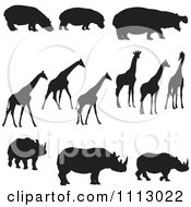 Black Silhouetted Hippos Giraffes And Rhinos
