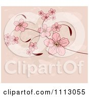 Clipart Pink Cherry Blossoms On A Branch Over Grunge Royalty Free Vector Illustration by Pushkin