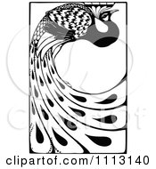 Clipart Vintage Black And White Peacock With Long Feathers Royalty Free Vector Illustration by Prawny Vintage #COLLC1113140-0178