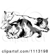 Clipart Vintage Black And White Cats Napping Royalty Free Vector Illustration by Prawny Vintage