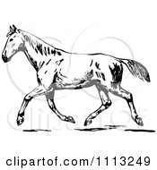 Clipart Vintage Black And White Trotting Horse Royalty Free Vector Illustration