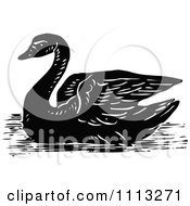 Clipart Vintage Black And White Swan Royalty Free Vector Illustration by Prawny Vintage