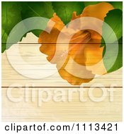 Orange Hibiscus Flower And Leaves Over Grungy Wood