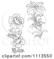 Clipart Black And White Lily And Wild Flowers Royalty Free Vector Illustration