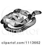 Clipart Vintage Black And White Snake Royalty Free Vector Illustration by Prawny Vintage
