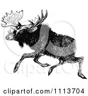 Clipart Vintage Black And White Moose Running Royalty Free Vector Illustration by Prawny Vintage