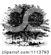 Clipart Vintage Black And White Oak Tree Royalty Free Vector Illustration