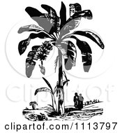 Clipart Vintage Black And White People Under A Plantain Tree Royalty Free Vector Illustration