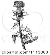 Clipart Retro Black And White Thistle Bud Royalty Free Vector Illustration by Prawny Vintage