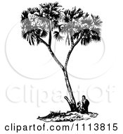 Clipart Vintage Black And White People Under A Date Palm Tree Royalty Free Vector Illustration