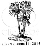 Clipart Retro Black And White Doum Palm Tree Royalty Free Vector Illustration