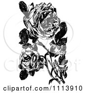 Clipart Vintage Black And White Roses Of Sharon Royalty Free Vector Illustration by Prawny Vintage