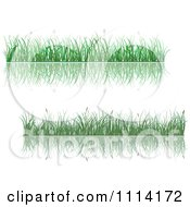 Clipart Green Grassy Borders And Reflections Royalty Free Vector Illustration