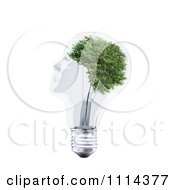 Clipart 3d Transparent Light Bulb Head With A Tree Royalty Free CGI Illustration