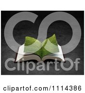 Clipart 3d Grassy Paged Open Book Royalty Free CGI Illustration by Mopic
