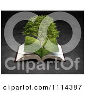 3d Grassy Paged Open Book With A Tree