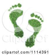 Clipart 3d Green Footprints Royalty Free CGI Illustration by Mopic #COLLC1114391-0155