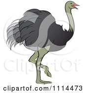 Clipart Walking Ostrich Royalty Free Vector Illustration by Lal Perera