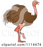 Clipart Walking Brown Ostrich Royalty Free Vector Illustration