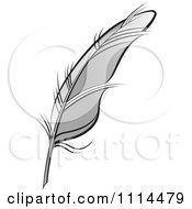 Clipart Gray Feather Quill Royalty Free Vector Illustration by Lal Perera