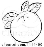 Clipart Outlined Orange Fruit With Leaves Royalty Free Vector Illustration