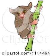 Clipart Tarsier On Bamboo Royalty Free Vector Illustration by Lal Perera