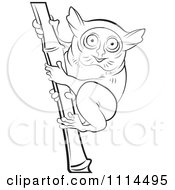 Clipart Outlined Tarsier On Bamboo 2 Royalty Free Vector Illustration by Lal Perera