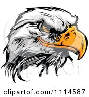 Clipart Fierce Bald Eagle Mascot Head Royalty Free Vector Illustration by Chromaco