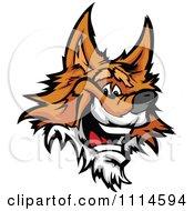 Friendly Happy Fox Face