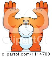 Clipart Buff Tiger Giving Up Royalty Free Vector Illustration