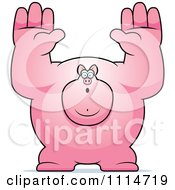 Clipart Buff Pig Giving Up Royalty Free Vector Illustration
