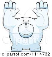 Clipart Buff Polar Bear Giving Up Royalty Free Vector Illustration