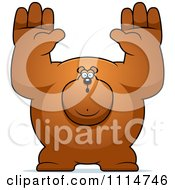 Clipart Buff Bear Holding His Hands Up Royalty Free Vector Illustration